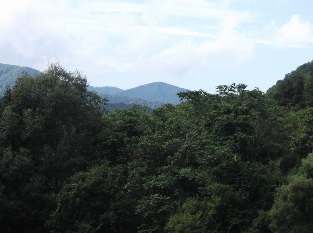 ナメトコ山遠景